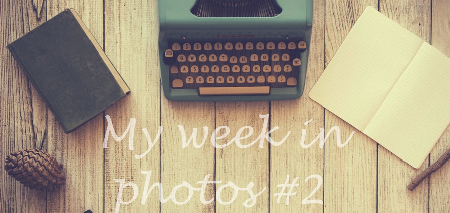 my week in photos 2